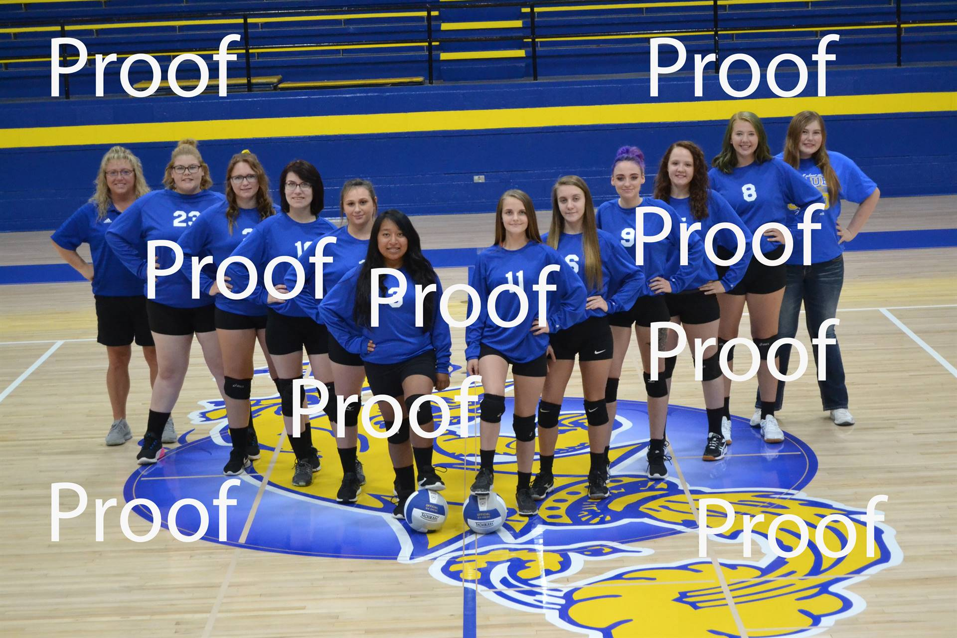volleyball proof 2