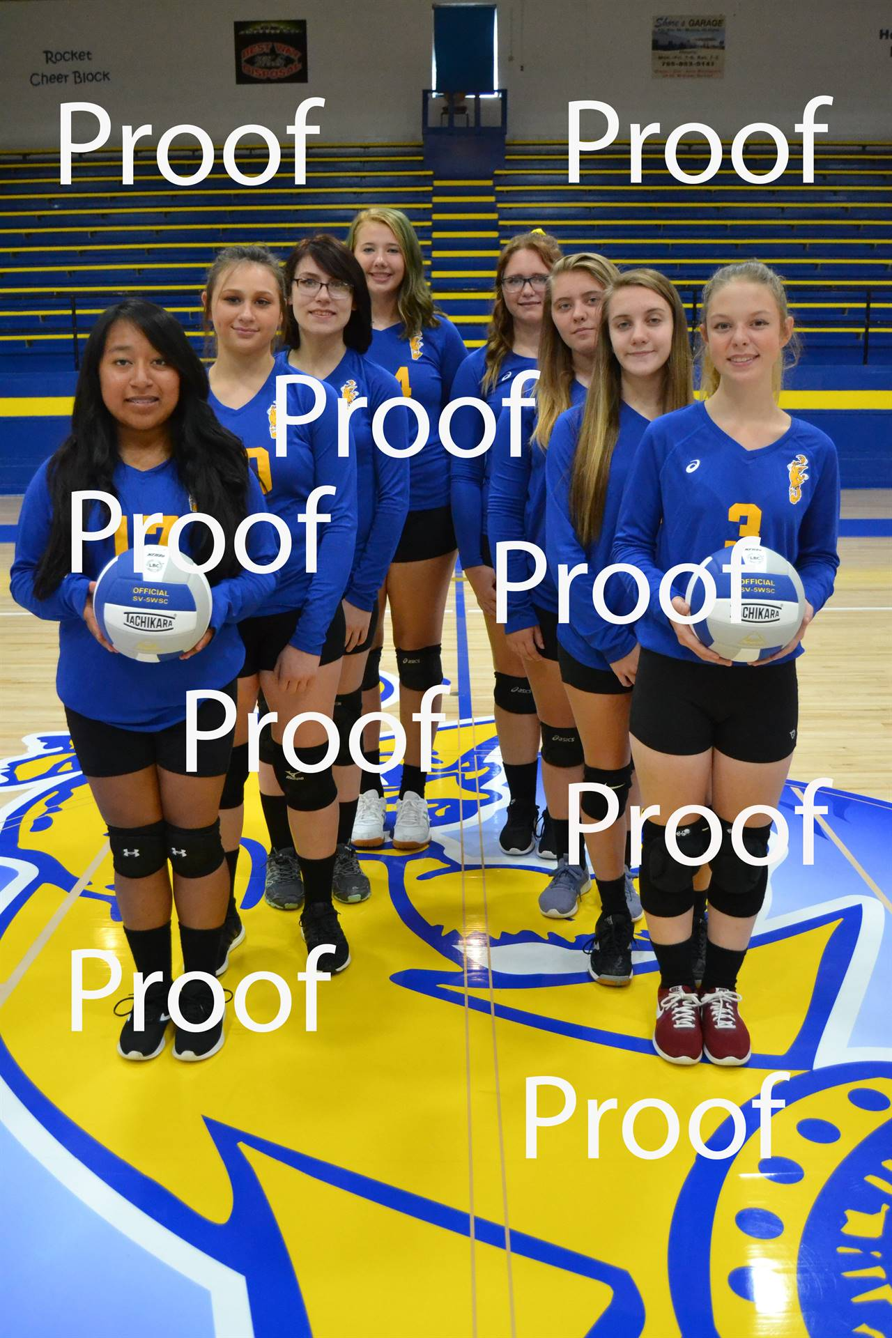 volleyball proof 3