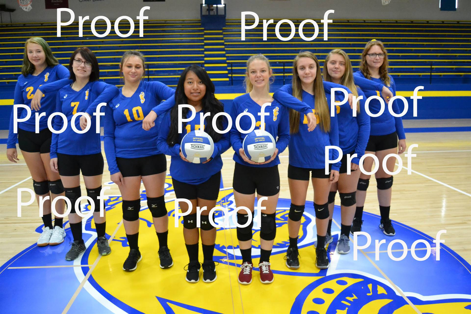 volleyball proof 4