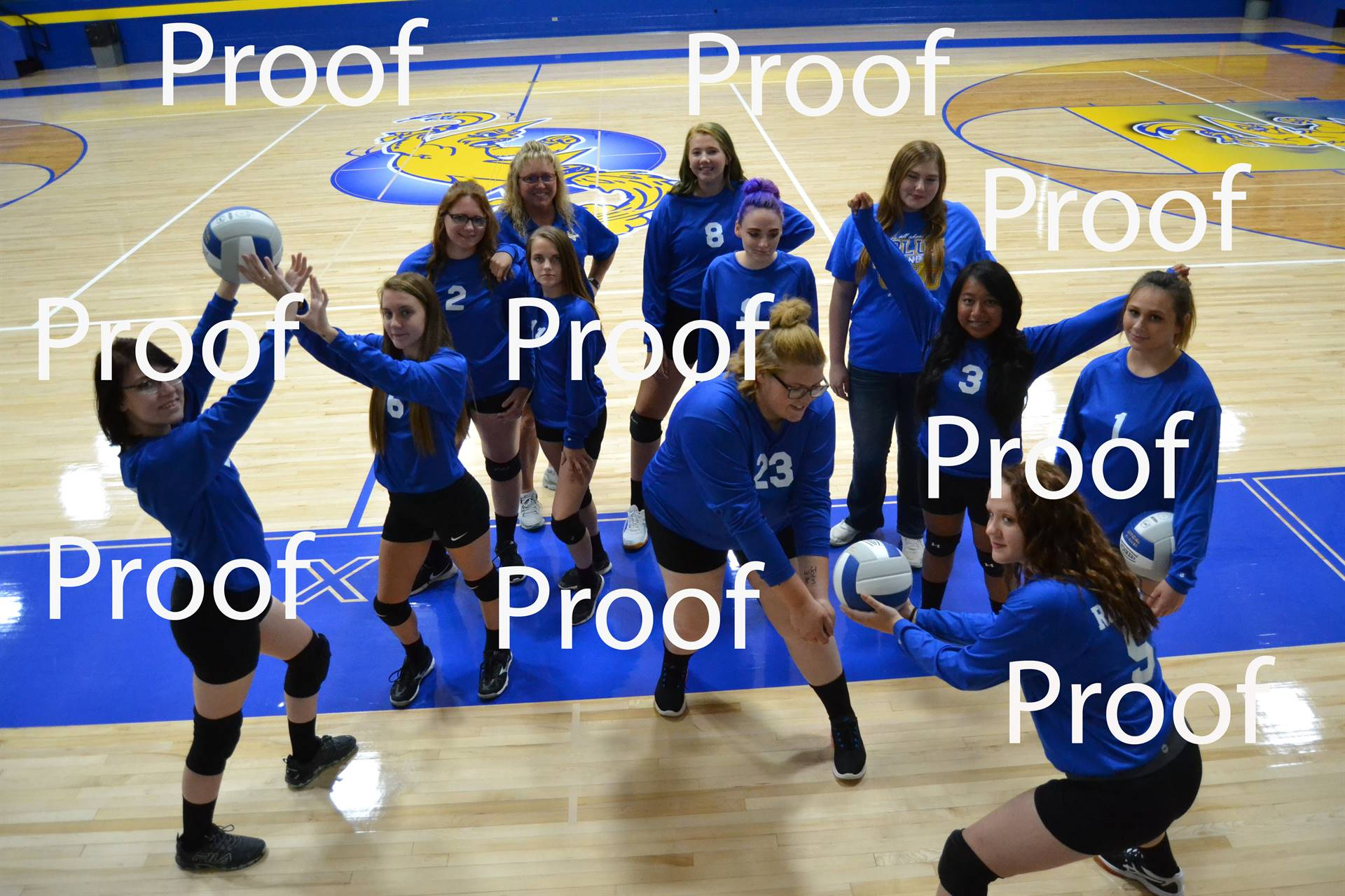 volleyball proof 6